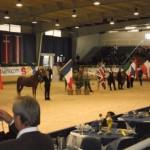 ANC Aachen (c)arab-horses.de