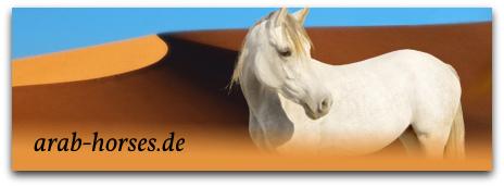 arab-horses.de
